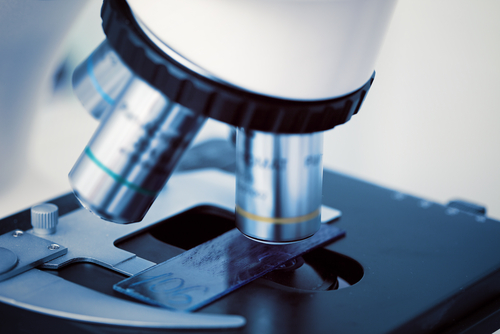 Tissue Scarring in Scleroderma Linked To Key Protein