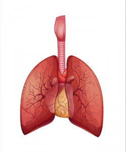 pulmonary vasculopathy